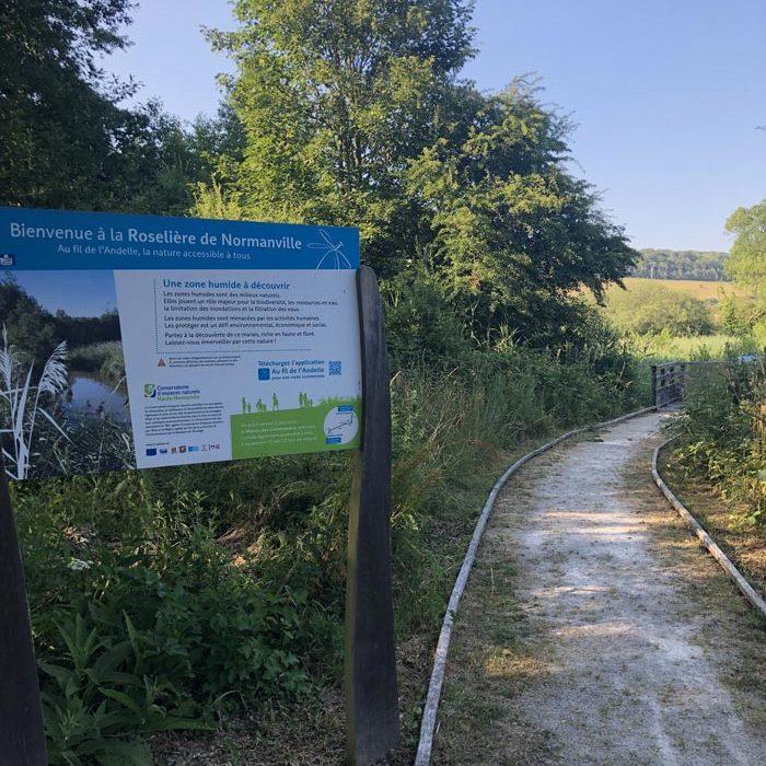 Panneau et chemin Roselière de Normanville Nature Le Mesnil-Lieubray Nature