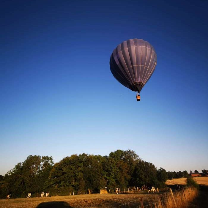 Vue d'une montgolfière dans le ciel au dessus des champs Airshow à Haudivilliers Loisirs