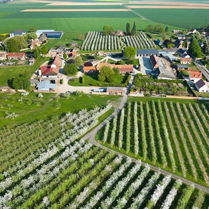 Vue aérienne du Pressoir d'Or à Frenelles-en-Vexin Terroir